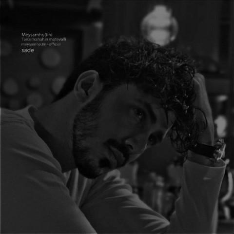 دانلود موزیک جدید میثم حسینی ساده