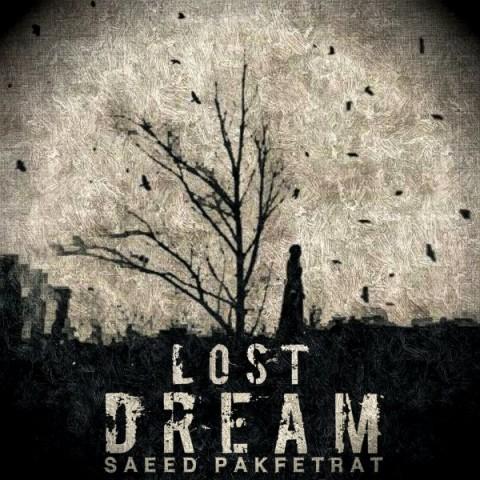 دانلود موزیک جدید سعید پاک فطرت رویای گمشده