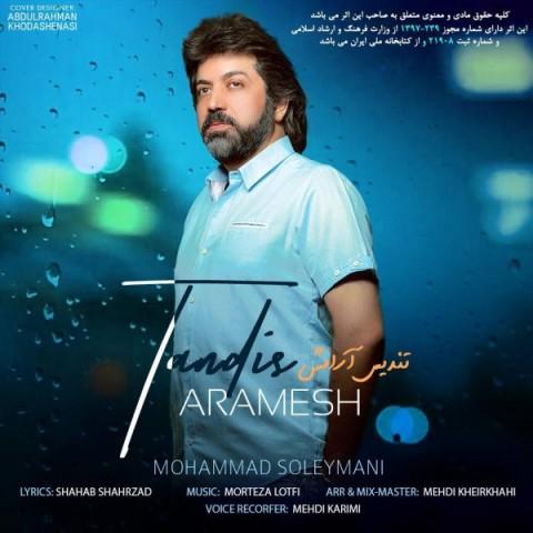 دانلود موزیک جدید محمد سلیمانی تندیس آرامش