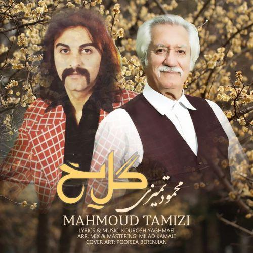 دانلود موزیک جدید محمود تمیزی گل یخ